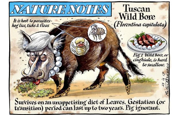 peter_brookes_23092017