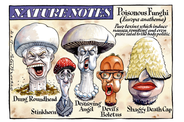 peter_brookes_21102017