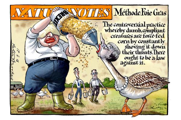 peter_brookes_17022018